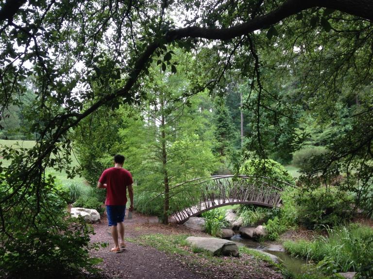 Exploring Dukes Garden, June 2014