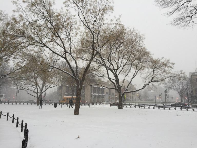 Washington DC morning snow on January 6, 2015